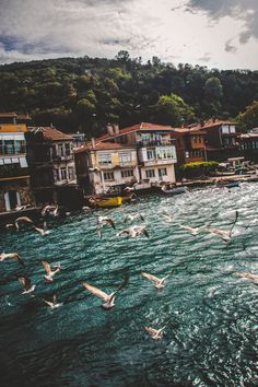 The Classy Issue-The Bosphorus, Istanbul, Turkey. Places To Travel, Places To See, Ankara, Turkey Travel, Most Beautiful Cities, Far Away, Travel Around, Adventure Travel, Asia