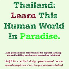 History of Global Control, it's effect on design & lifestyle. Lectures, Design, Vital community projects on amazing Koh Pha-Ngan! certified Design Professional course. learn permaculture, biodynamics, bio-organic farming, natural buildings, earth ovens, the power of design thinktanks. course is full at 12 engagers, so check it out now!