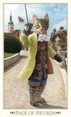 Page of Swords - Baroque Bohemian Cats Tarot I Love Cats, Crazy Cats, Cool Cats, Page Of Swords, Cat People, Cat Life, Pet Portraits, Cat Art, Cats And Kittens