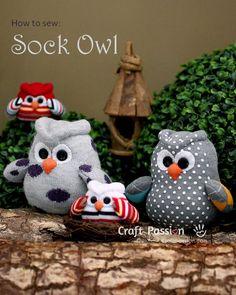 sock-owl-family