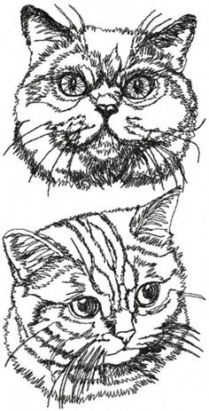 Online center for machine embroidery designs. On this site you can find machine embroidery designs in the most popular formats, with a new free machine embroidery design each month. Free embroidery projects, tips and tutorials are also available. Advanced Embroidery, Learn Embroidery, Machine Embroidery Patterns, Embroidery For Beginners, Silk Ribbon Embroidery, Embroidery Techniques, Embroidery Stitches, Hand Embroidery, Thread Painting