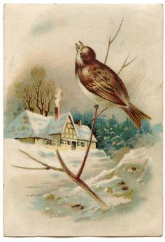 Winter Cottage Scene Image with Bird! - The Graphics Fairy