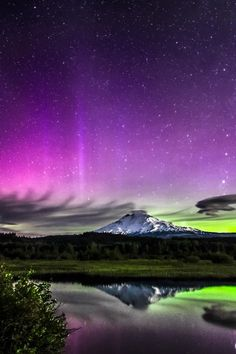 Aurora Song and Art For Oso Photography Auction Fundraiser | Starlisa