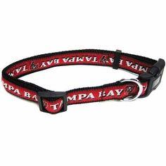 Tampa Bay Buccaneers Collar Medium