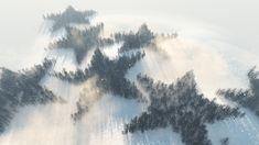 La forêt étoilée - D
