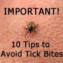 Lyme Disease Blog, lots of info I was diagnosed with lyme recently. I had heard of it but had never really thought much about it at all. I will do whatever I can to make sure my kids do not have to go through what I am..