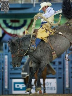 Saddle bronc rider Chad Ferley of Oelrichs, SD rides Spring Planting at the Reno Rodeo in Reno, NV.    Photo Via - Matt Cohen