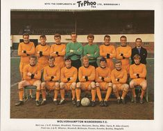 Wolves team group in Retro Football, School Football, Football Kits, Football Cards, Wolverhampton Wanderers Fc, Typhoo, Bristol Rovers, Association Football, Most Popular Sports