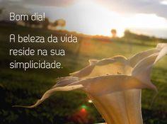 Bom dia! A beleza da vida reside na sua simplicidade. (...) https://www.frasesparaface.com.br/bom-dia-a-beleza-da-vida-reside-na-sua/