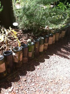 upside down wine bottles as flowerbed border. That's a lot of glasses of wine!