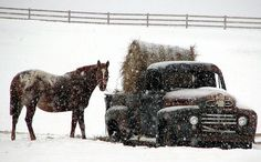 Winter Scene ~ Hay Delivery | Simply Marvelous Horse World
