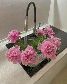 Flower Aesthetic, Pink Aesthetic, My Flower, Beautiful Flowers, Beautiful Fruits, No Rain, Arte Floral, Planting Flowers, Floral Arrangements