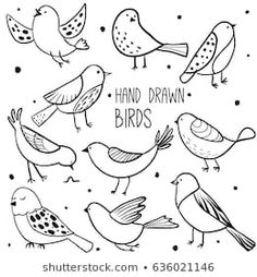 Collection of cute hand drawn bird doodles. Black on white vector set Bird collection. Collection of cute hand drawn bird doodles. Black on white vector set Bird Drawings, Doodle Drawings, Easy Drawings, Sketch Note, Bird Sketch, Tier Doodles, Doodle Images, Doodle Pictures, Scrapbook