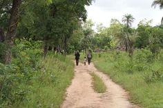 back form field in familly - yaka, Kara- Togo
