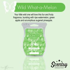 WILD WHAT-A-MELON SCENTSY BAR Your little wild one will love this fun and fruity fragrance, bursting with ripe watermelon, green apple and scrumptious sugared pineapple.