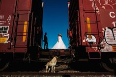 Wedding Photography Contests - Summer 2016 Results Photography Contests, Amazing Photography, Wedding Photography, Wedding Couples, Wedding Photos, Best Wedding Photographers, Summer 2016, Wedding Invitations, Mexico
