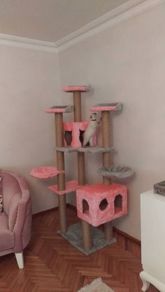 Pretty Cats, Beautiful Cats, Diy Cat Hammock, Paris Room Decor, Cat House Diy, Diy Cat Tree, Cat Towers, Cat Scratching Post, Cat Condo