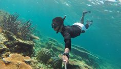 Karimunjawa has colorful corals and attracting tourist to see closer by snorkeling or diving.