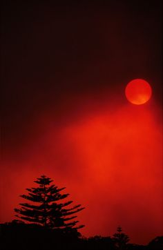 Blood Red Sun by ~jbrum on deviantART
