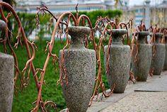 A világ legcsodálatosabb kerítései, melyeket mindenképp látnod kell!