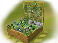 Small space vegatable garden plan @ its-a-green-lifeits-a-green-life