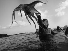 SOUTH KOREA. Jeju Island. 2014. No sooner had the group of Haenyeo I was #diving with entered the water when one of them snatched an #octopus from its hiding place under a rock. ( @DavidAlanHarvey/ #MagnumPhotos) by magnumphotos