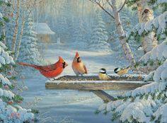 Cardinal Winter Scene