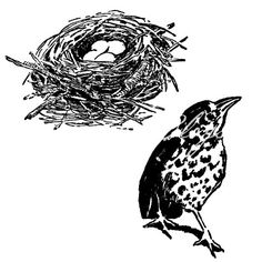 Vintage Drawings of Bird and Nest with Eggs by makincuteblogs.com/shop - $.99