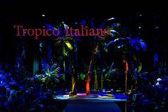 Milano Moda Haftası: Dolce & Gabbana - Fotoğraf 1 - InStyle Türkiye