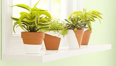 Let pretty painted terra cotta pots shine on an easy-to-install window shelf.