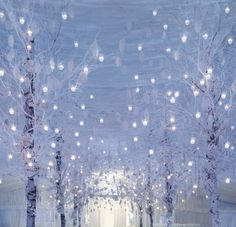 winter wedding decor.. I hate winter but I wanna get married then just so I can do my wedding like this!