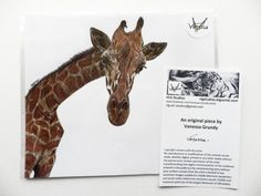 Giraffe - Giraffa camelopardalis Drawn as an original piece for my 2017 Earth's Treasures Calendar, this original drawing is based upon a photograph taken of one of the adorable Giraffes at Kanchanaburi Safari
