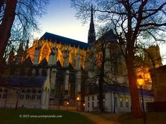 Dusk in early winter at Cathedral Notre-Dame d'Amiens from Parc de l'Evêché (bishop's palace) Somme Picardy France