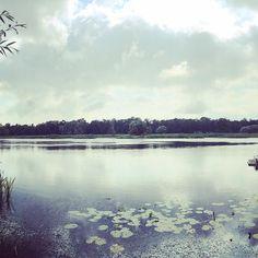 Das letzte Mal einer der schönsten Blicke der Welt.  #heimat #omisgarten #kindheitserinnerung