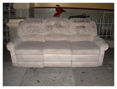Bed Bug Couch Cover