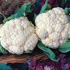 Best Garden Seeds Heirloom Natural Health White Cauliflower Broccoli, 50 seeds, rich tasty nutrition good compact