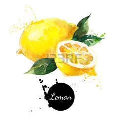 Main peinture � l'aquarelle tir� sur fond blanc. Vector illustration de fruits…