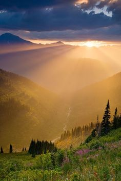 Sun Road, Glacier National Park, Montana                              …