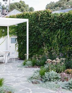 Boston ivy provides a lush green backdrop to this outdoor dining area at a cottage in Adelaide Outdoor Paving, Outdoor Tiles, Outdoor Areas, Flagstone Paving, Big Garden, Garden Show, Garden Beds, Garden Path, Sloped Garden