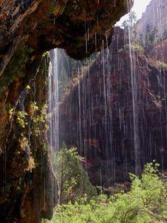 Weeping Rock--Zion National Park, Utah