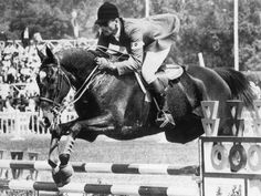 Bill Steinkraus and Snowbound -Gold  1968 Gallery | FEI History Hub
