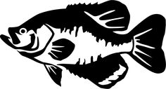 Why Do Fishermen Have Such Mixed Opinions About Carp Fishing? - Fishing Tips Fish Silhouette, Silhouette Clip Art, Fish Template, Easy Drawings