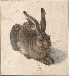 Albrecht Dürer, Hase, 1502 © Albertina, Wien