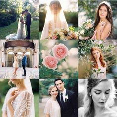 @matolikeely   San Diego, California   Washington DC Metro   Fine Art Film Photographer   Wedding and Editorial   PhotoVision   SP3000