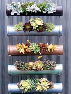 You'll want to plant a vertical garden after you see these gorgeous ideas. These gardening trends are perfect for a small area or as a fun decorating piece. Add one of these trendy gardening ideas to your home.