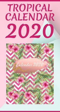 Calendar Monthly and Weekly Planner With 12 Month and 52 Week Planner and Notebook / Diary / Log / Journal for Organize and Plan Your Activities Paperback