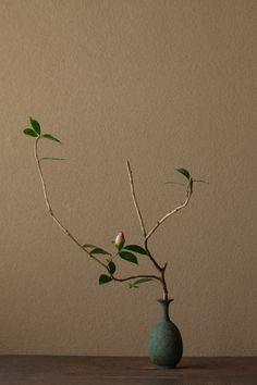 2012年3月9日(金)この枝ぶりには参りました。一枝一葉も落していません。   花=長束椿(ナガツカツバキ)   器=青銅王子形水瓶(六朝時代)