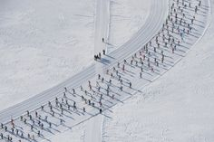 Competitors on their way in the annual Engadin cross country skiing marathonfrom Maloya to S-Chanf in Switzerland.