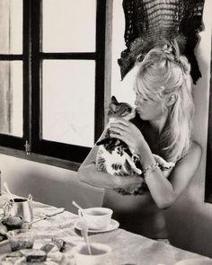 Brigitte Bardot & kitten