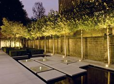 A garden in The Boltons, Chelsea, by Philip Nixon.